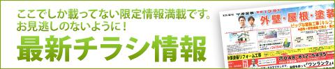 最新チラシ情報 超高耐久無機塗料 シリコン塗料 フッ素塗料 ファイン4Fセラミック  光触媒塗料 ハイドロテクト ガイナ断熱塗料